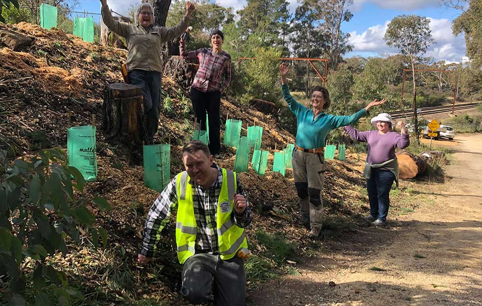Bushcare volunteers at Fairy Bower Reserve, Mount Victoria